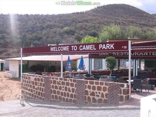 Restaurant in Camel Safari Gran Canaria
