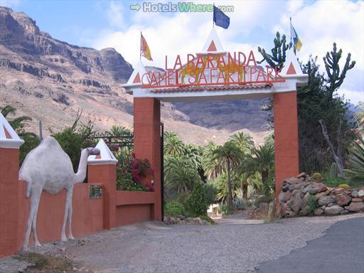 Camel Safari Park La Baranda, Gran Canaria