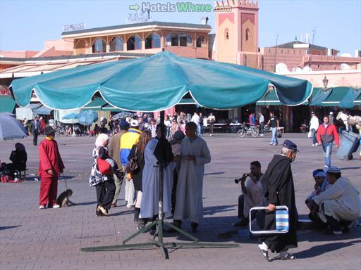 Snake charmers at Djemaa el Fna, Marrakech